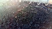 Продаю уголь производство Казахстан
